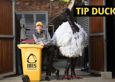Tip Duck